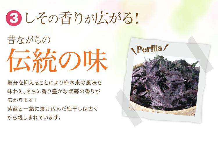 紫蘇梅,減塩,梅干し