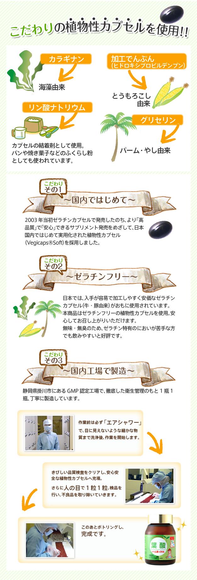 葉酸説明3